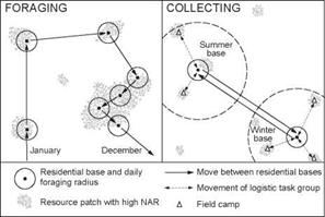 Energy Foraging versus Energy Collecting
