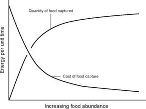 ENVIRONMENTAL IMPACT ON ENERGY COST OF FOOD CAPTURE